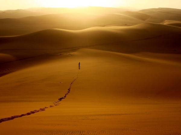 Raid au désert